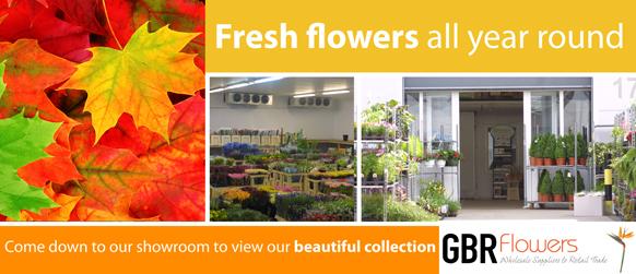 banner-fresh-flowers